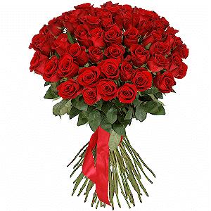 51 красная роза премиум с доставкой в Новосибирске