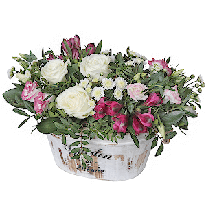 Мечта +30% цветов с доставкой в Новосибирске