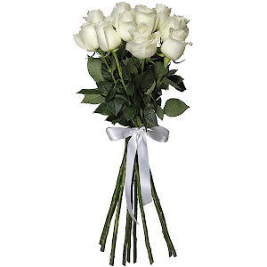 Букет из 11 белых роз - премиум