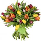 """Букет """"Тюльпаны (35 шт.)"""""""